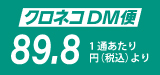 フチ糊圧着DM A4サイズ DM印刷発送